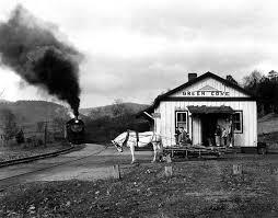 horse train