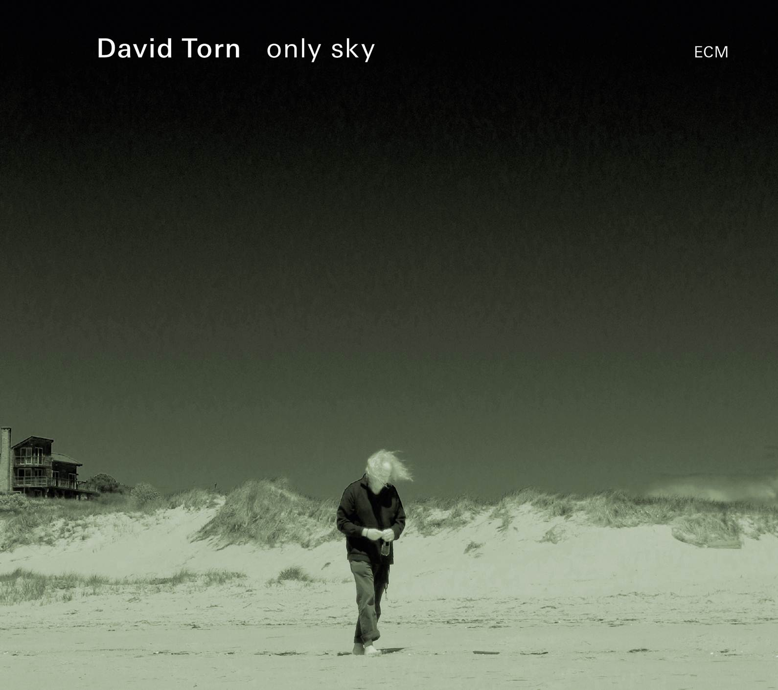 David Torn - only sky cover